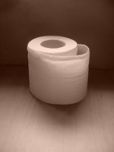 toilet-paper-1427901-639x852