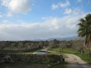 Uitzicht vanaf de B&B nabij Costitx, Mallorca