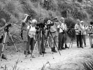 Verrekijkers en telescopen i.p.v. zonnebrandcreme en strandstoelen voor de Nederlandse natuurgenieters op Mallorca